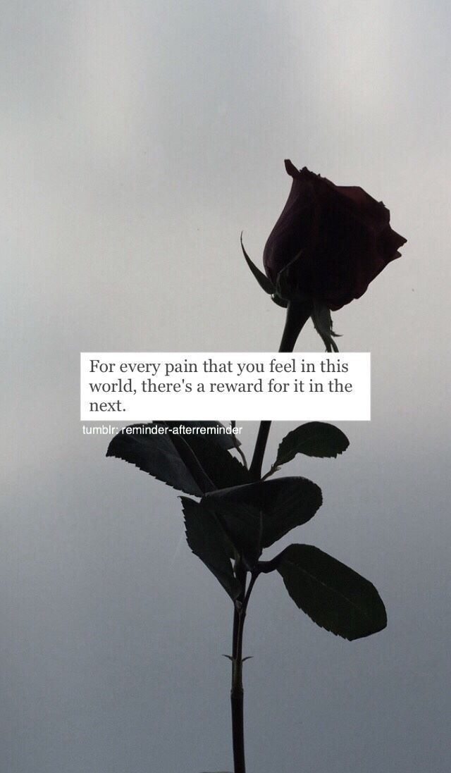 Just think about that, Every pain we feel in this world, we are rewarded for in ... -