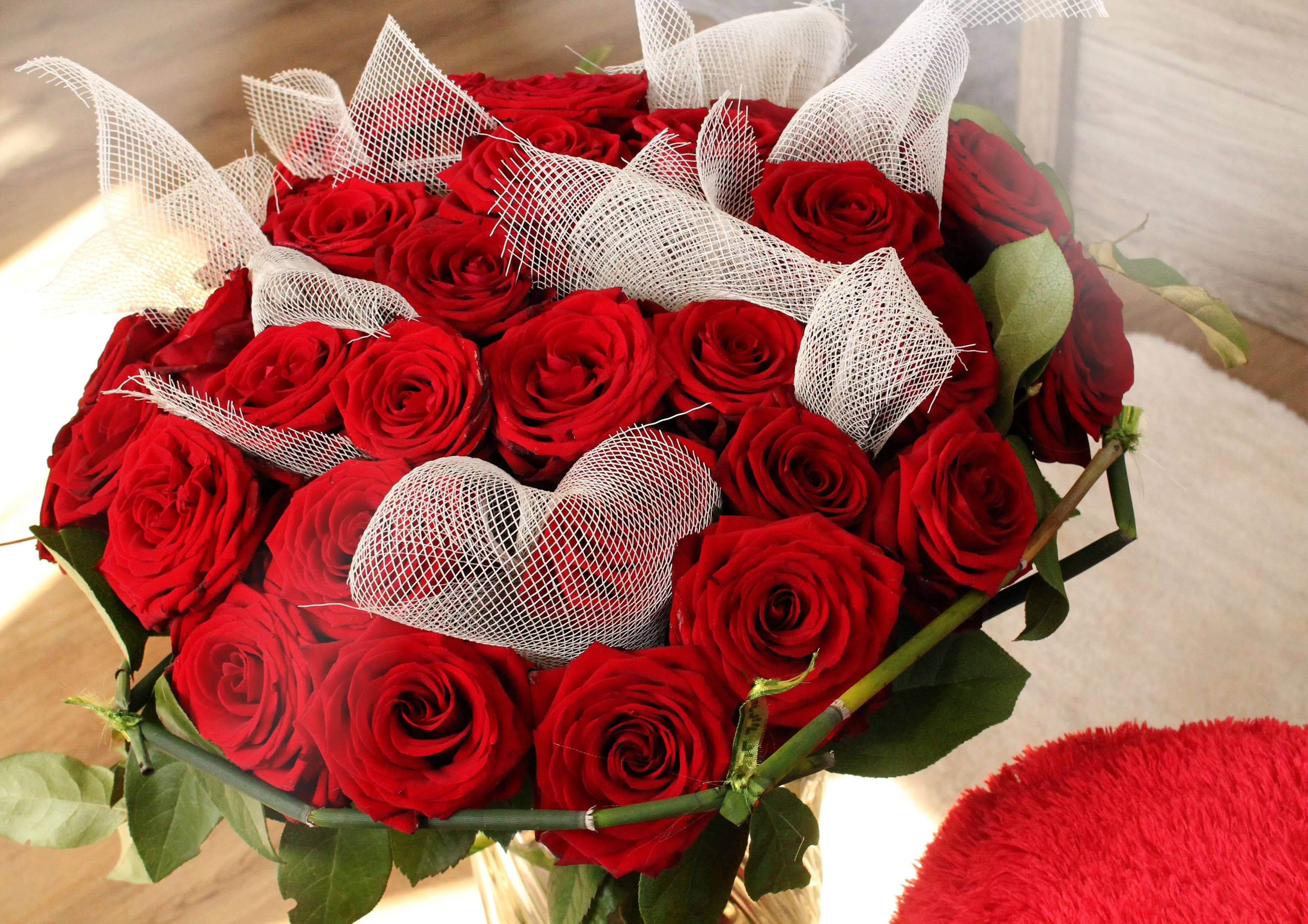 #amorousness #color #feeling #flower #flowers #foliage #love #passion #red #red rose #romance #romantic #rose