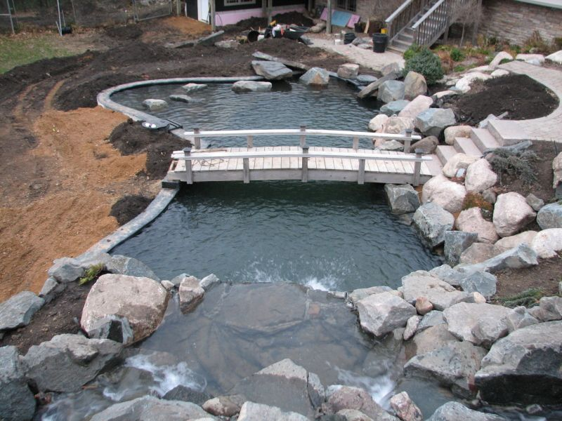 Koi pond google search koi ponds pinterest pond for Koi pond volume calculator