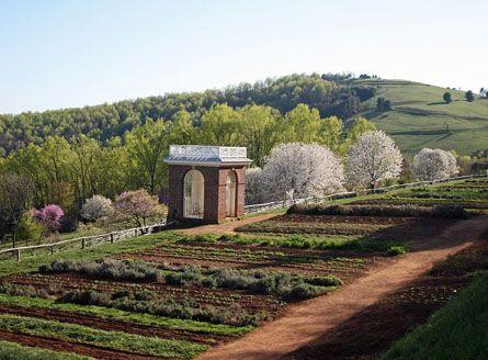 Pin by Thomas Jefferson's Monticello on The Revolutionary ... |Thomas Jefferson Garden Seeds
