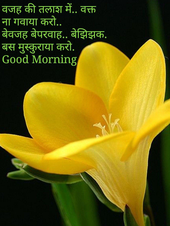 Pin By Vinayak Shetty On Good Morning Pinterest Flowers