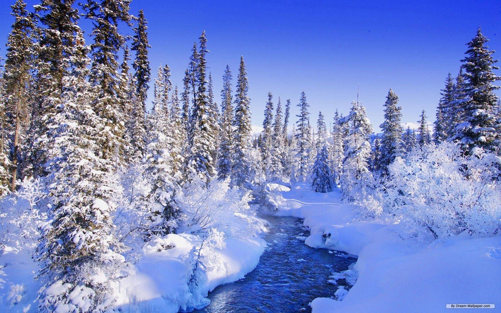 Winter Nature Wallpapers Desktop For Desktop Wallpaper Winter Landscape Winter Scenery Winter Nature