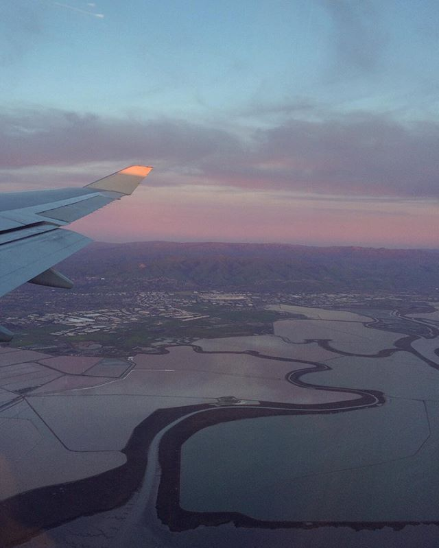 pink and purple dusk landing at SFO