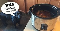 Bone broth is one of the most nutritious and delicious foods for dogs. Learn how to make it and why your dog needs it.