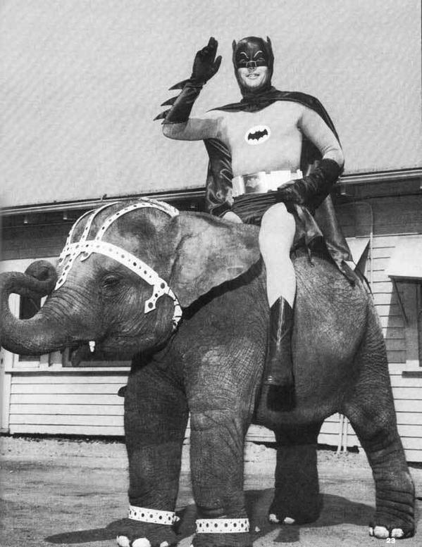 Batman (Adam West) montando un Elefante, 1967