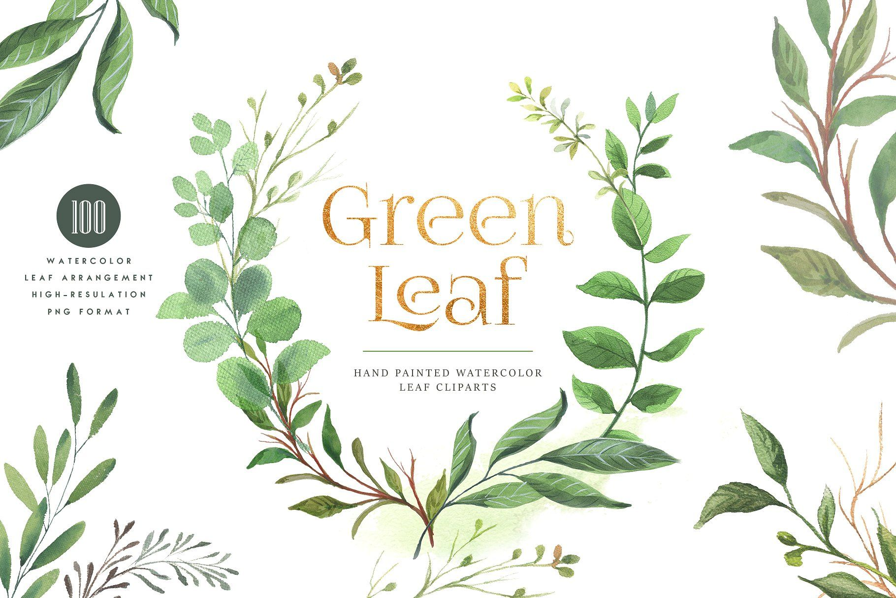 Green Leaf Watercolor Clipart パッケージデザイン デザイン