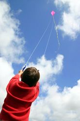How To Build A Freedom Kite Activity Education Com Go Fly A Kite Kite Designs Activities