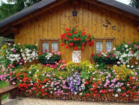 Красиви идеи за двора и градината | Art senses – артистични идеи за интериор и градина.