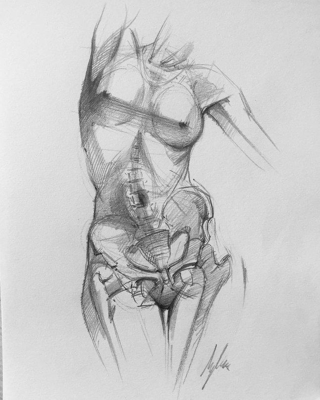 Pin By Jiroarty On Pinterest Anatomy Draw And Sketches