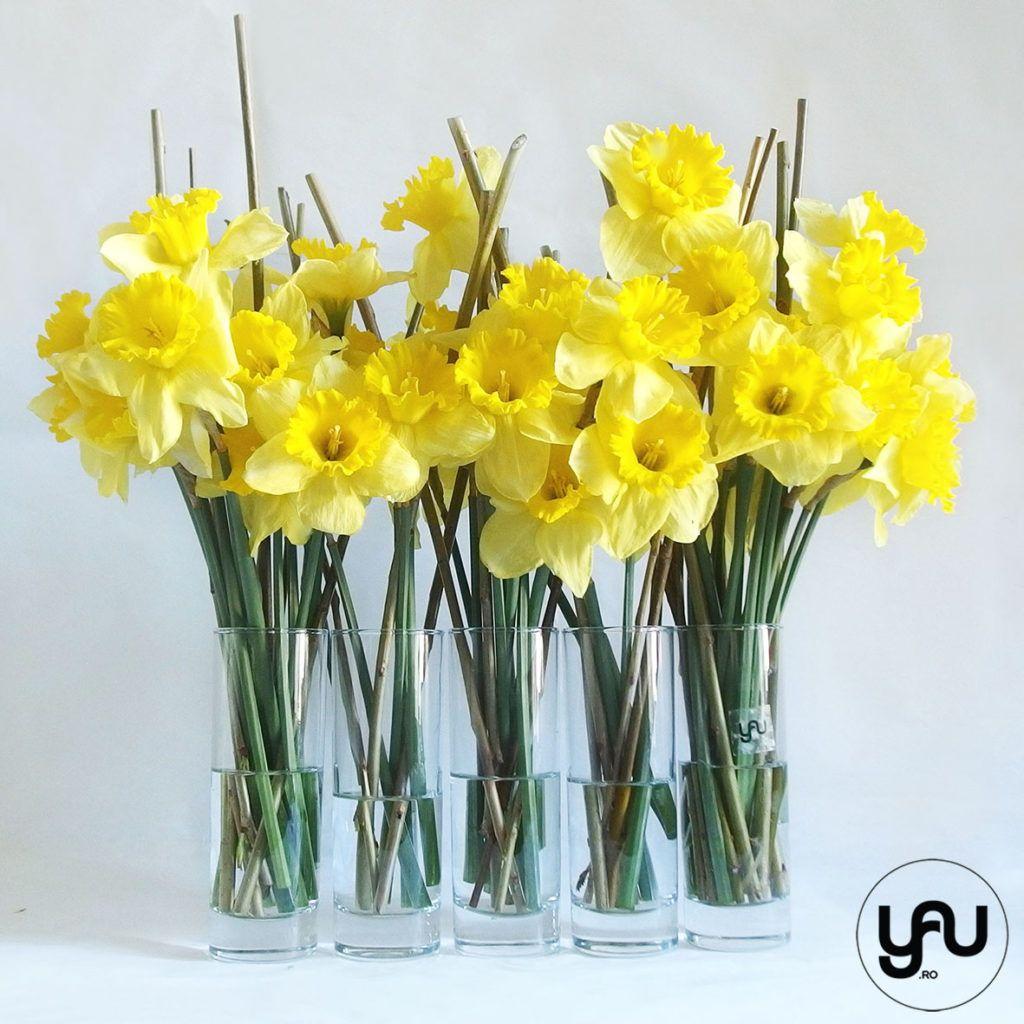 Narcise galebene si sticala _ yauconcept _ elenatoader