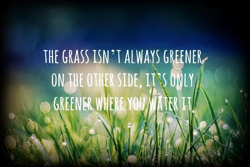 Grass Is Always Greener Quotes: The Grass Isn't Always Greener On The Other Side, It's