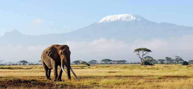 "Read ""The Snows of Kilimanjaro""; Climb Mt Kilimanjaro for less than $1000"