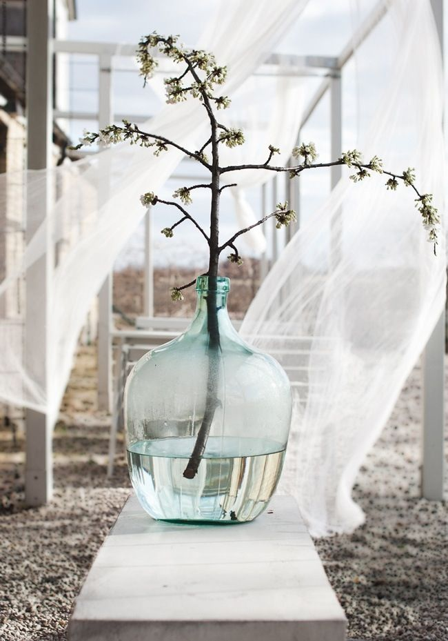 Giant glass bottle & billowing muslin curtains