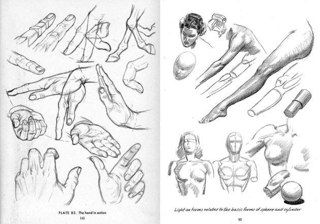 Aprende A Ilustrar Gratis Los Libros Pdf De Andrew Loomis Ofnblog Libro De Dibujo Libros De Dibujo Pdf Cuadernos De Bocetos