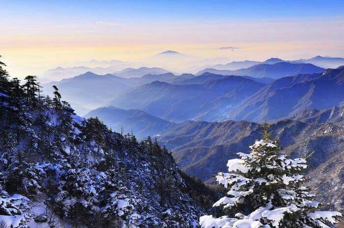 Snowscapes of Jiri-Mt.  지리산 설경