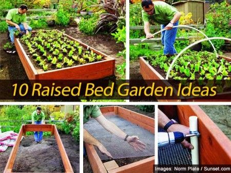 Merveilleux 10 Raised Bed Garden Ideas