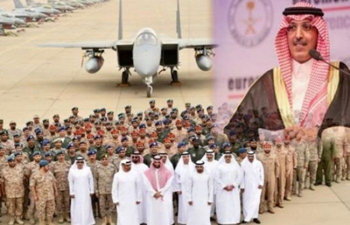 اخبار اليمن Release Dove Animals Doves