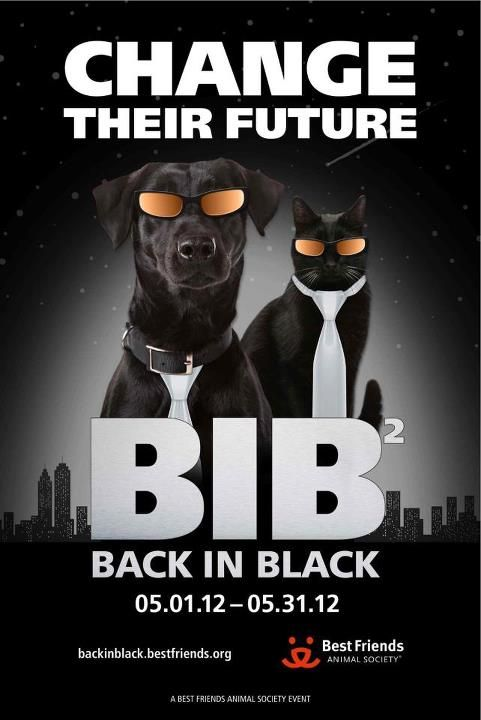 We Re Back To Change The Future For Homeless Pets In Black And Give Them The Best Odds At Getting Adopted Animal Society Pet Adoption Event Best Friends Pets