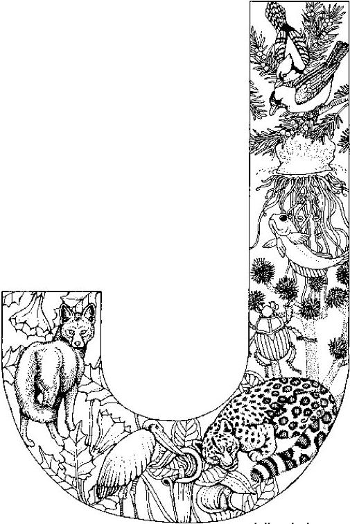 J For Jellyfish Jaguar Jackal Alphabet Malvorlagen Malvorlagen Tiere Kostenlose Ausmalbilder