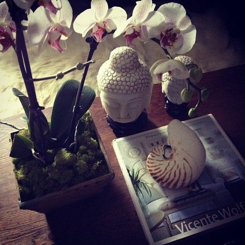 coffee table, orchid, buddha head, tiger nautilus, vignette, vicente wolf book - apartmentf15 photo #buddhadecor