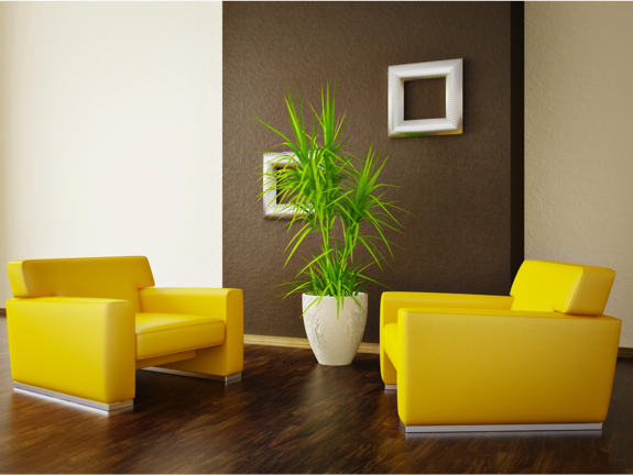 Surround A Dark Accent Wall Such As French Roast SW 48 With Fascinating Bright Colors For Living Room Exterior