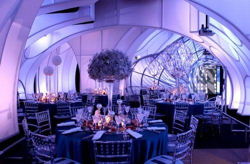 Adler Planetarium Wedding.Adler Planetarium Steven Universe Styled Wedding Chicago Wedding