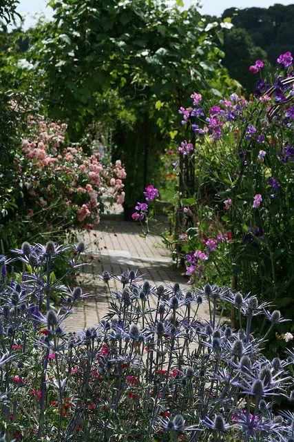 Classic planting design. Pinned to Garden Design - Planting Schemes by Darin Bradbury.