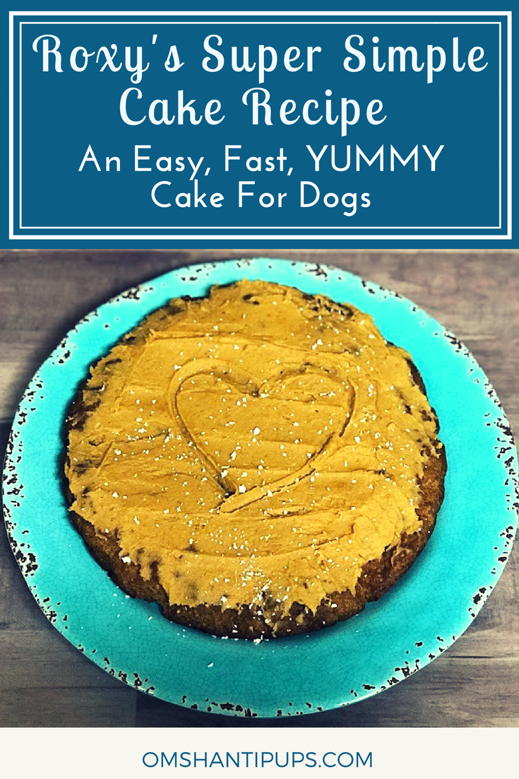 An Easy Fast YUMMY Cake Recipe Dog Easy and Pet care