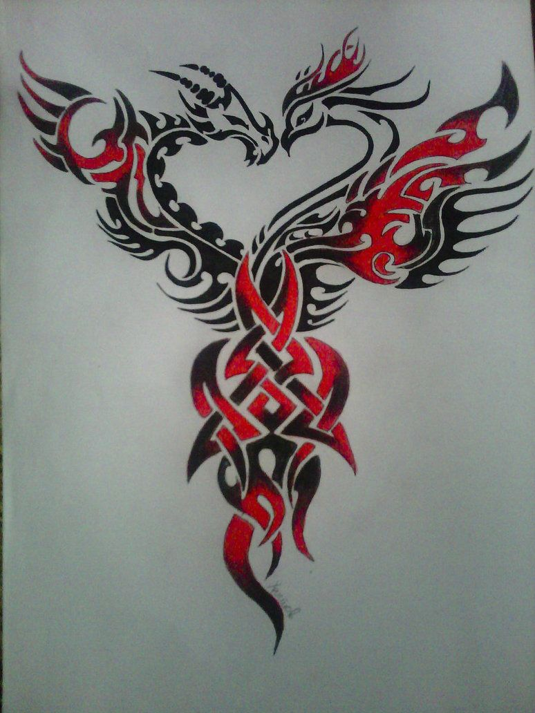 image detail for free download phoenix tattoos design 6430 with