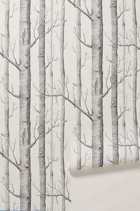 Cole & sons wallpaper found @ anthropologie