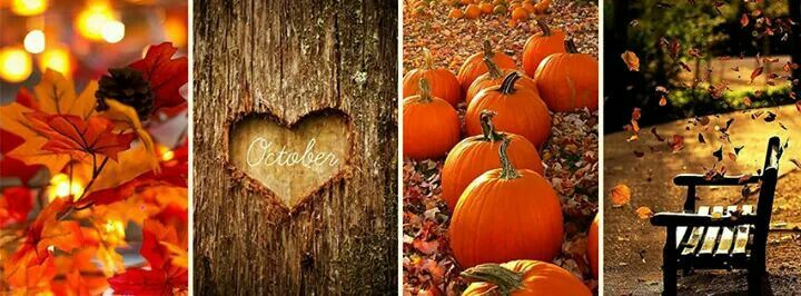 Fall FB Cover Fall facebook cover, Halloween cover
