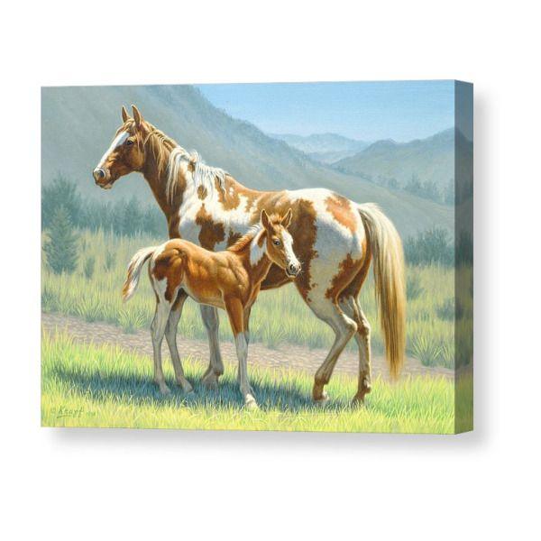Valley Paints Canvas Print   Американский пейнтхорс ...