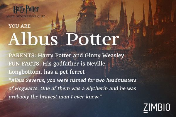 """You are Albus Potter!  Parents: Harry Potter and Ginny Weasley Fun Facts: His godfather is Neville Longbottom, has a pet ferret.   """"Albus Severus, you were named for two headmasters of Hogwarts. One of them was a Slytherin and he was probably the bravest man I ever knew."""""""