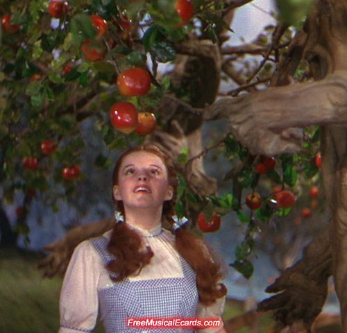 Pin On I ♥ Dorothy Gale