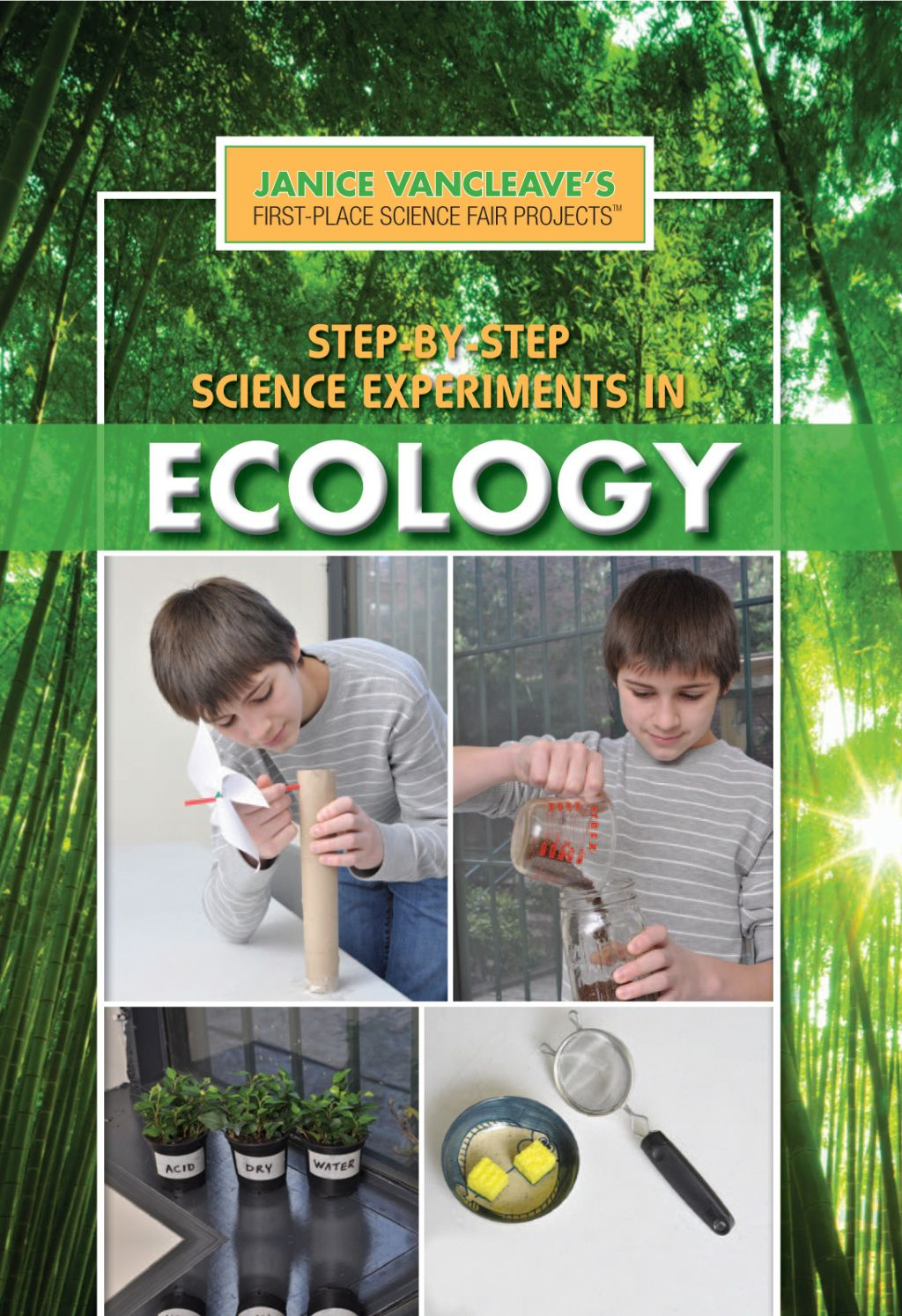 Projects science ebook fair