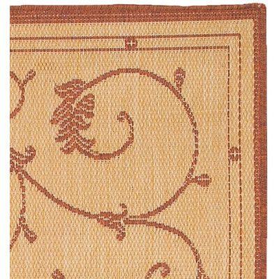 a close up of the Veranda Terracotta