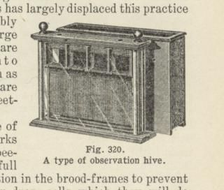 A type of observation hive.