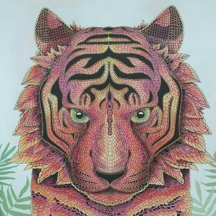 Bengal Tiger From The Menagerie Colouring Book