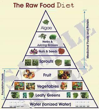 Raw food diet chart fitness health eat me vegetarian raw food diet chart fitness health forumfinder Image collections
