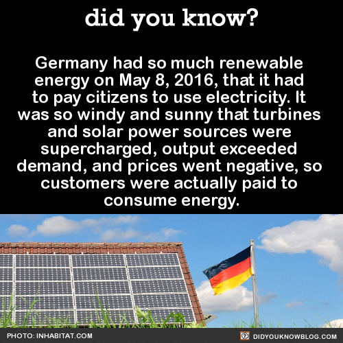 Are You Searching For Green Energy Tips Solar Energy Pros And Cons Fun Facts Wtf Fun Facts Weird Facts