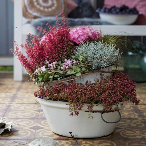 planting ideas for your balcony and terrace in autumn  BLOOMs  balcony and terrace tips for decorating and planting outdoors Romantic planting ideas for your balcony and...
