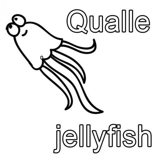 Kostenlose Malvorlage Englisch Lernen Ausmalbild Englisch Lernen Qualle Jellyfish Zum Ausmalen Englisch Lernen Buchstaben Lernen Englisch Lesen