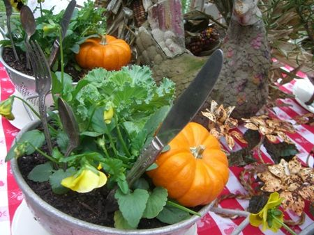 Flowers, pumpkins...(from Cherry Hill Cottage)