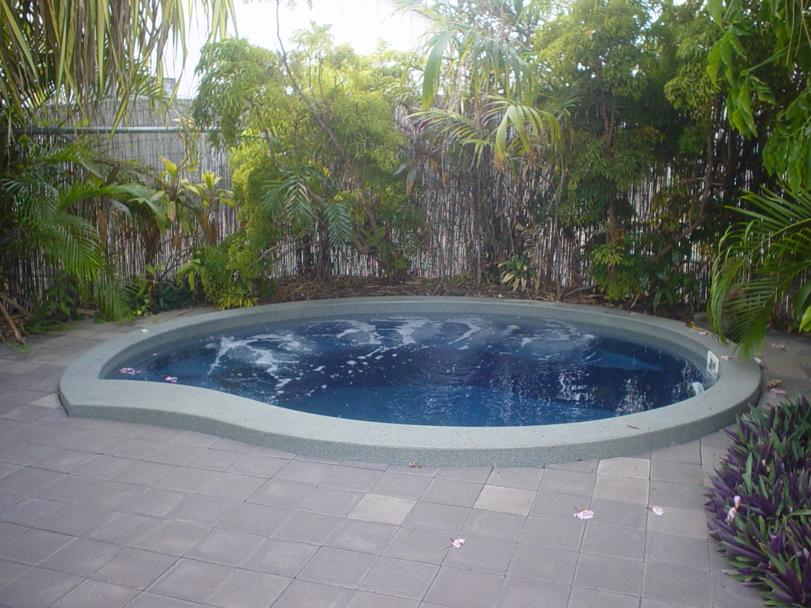 small inground pool images bing images dream home