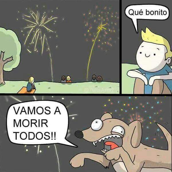 Pin By John Wick On El Mejor Amigo Del Hombre Animal Memes Humor Funny Kids