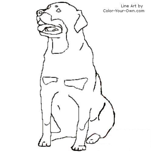 Sitting Rottweiler Dog Line Art Dog Line Art Puppy Drawing