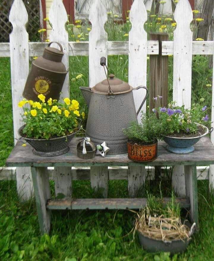 Galvanized Coffe Pot & Plants...