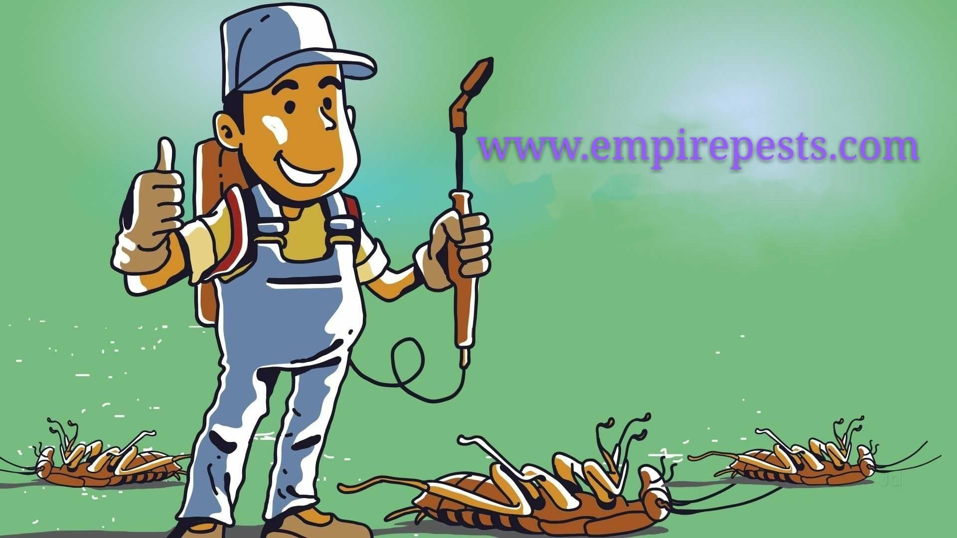 Get in touch with us! Call Empire Pest Control now, on📞 +1