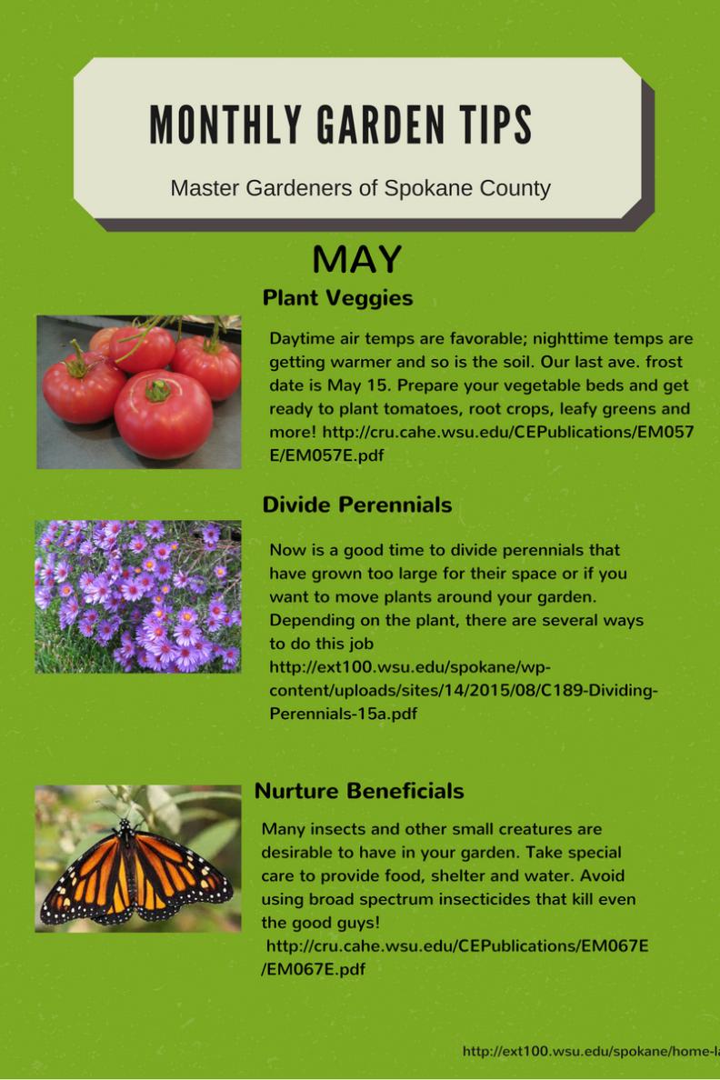 126cb804cf15db542d611db7fd34d70e - Washington County Master Gardeners Plant Sale