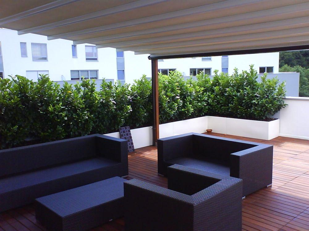 Pergole Country Med Forma Pergole Retractabile Cu Structura Din Lemn Pentru Terase Balcon Relaxare Si Confort Garantat Sub Pergola Outdoor Structures Outdoor